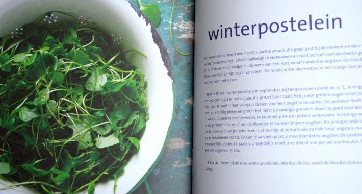 Review Green delicious: Puur koken met je eigen oogst
