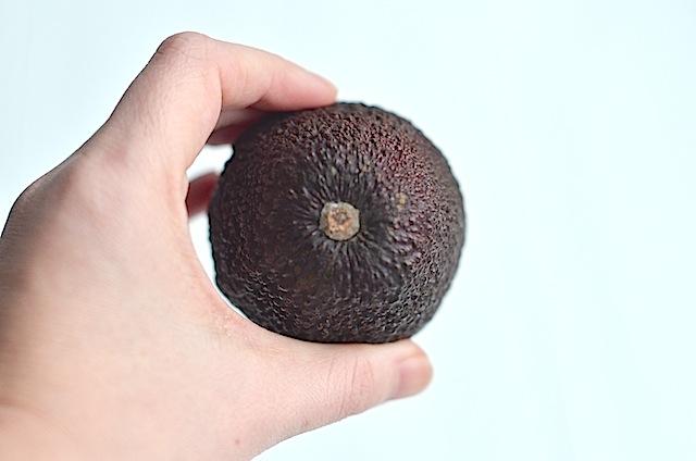 avocado check