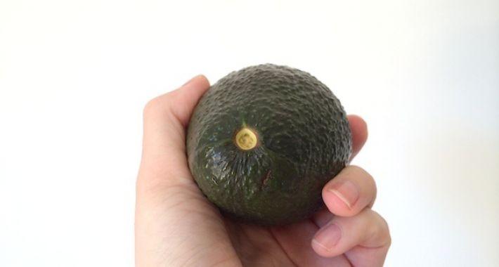 avocado checken