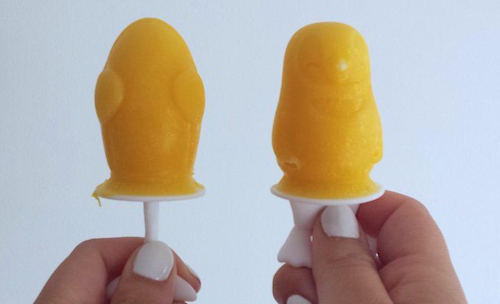 yoghurt fruit ijsjes 10