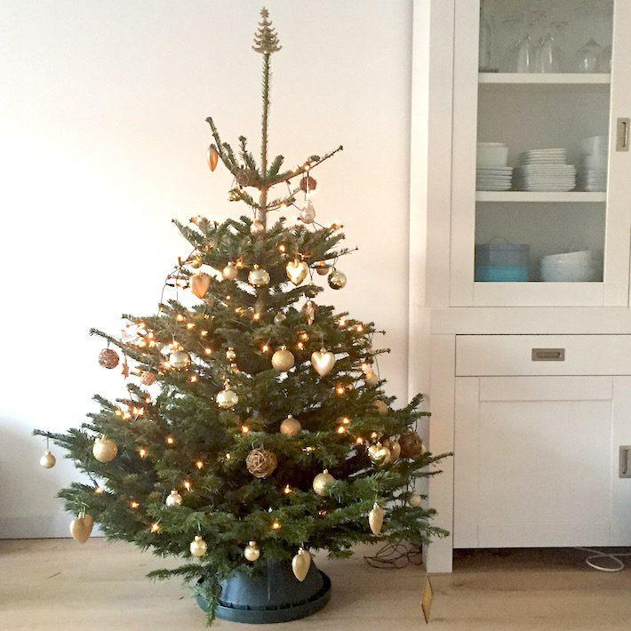 diary kerstboom