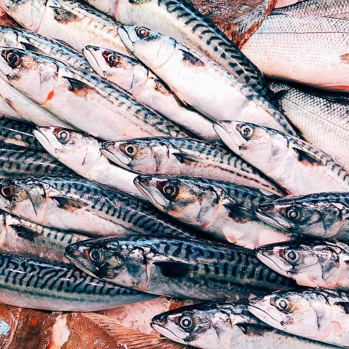 vishandel