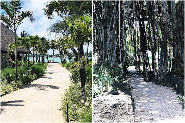 Onze vakantie op Mauritius in foto's